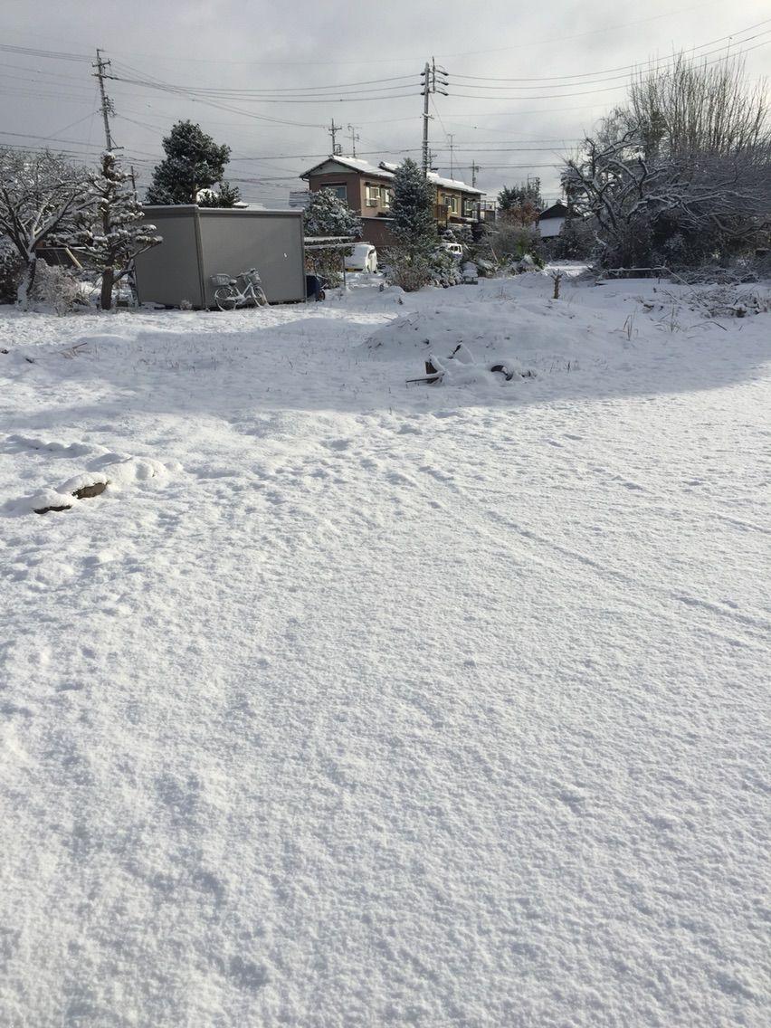 ここは雪国!?江南市