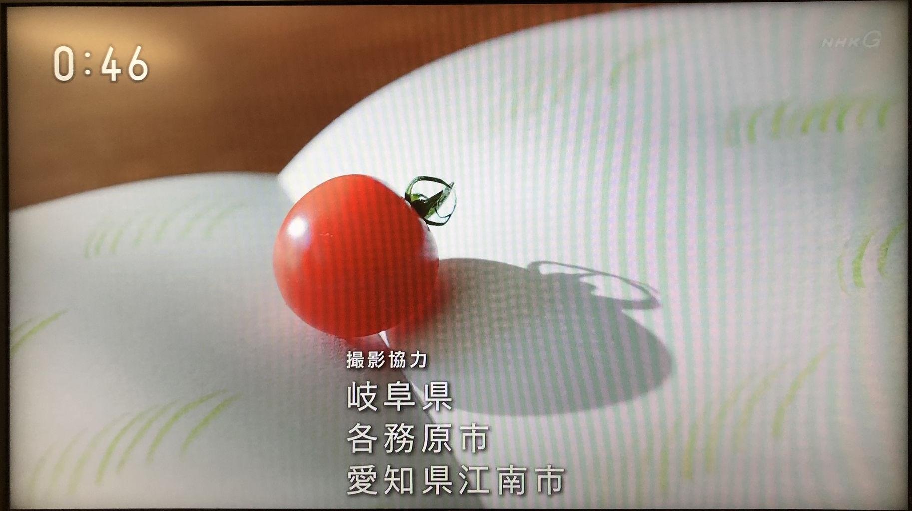 『半分、青い。』撮影協力「愛知県江南市」